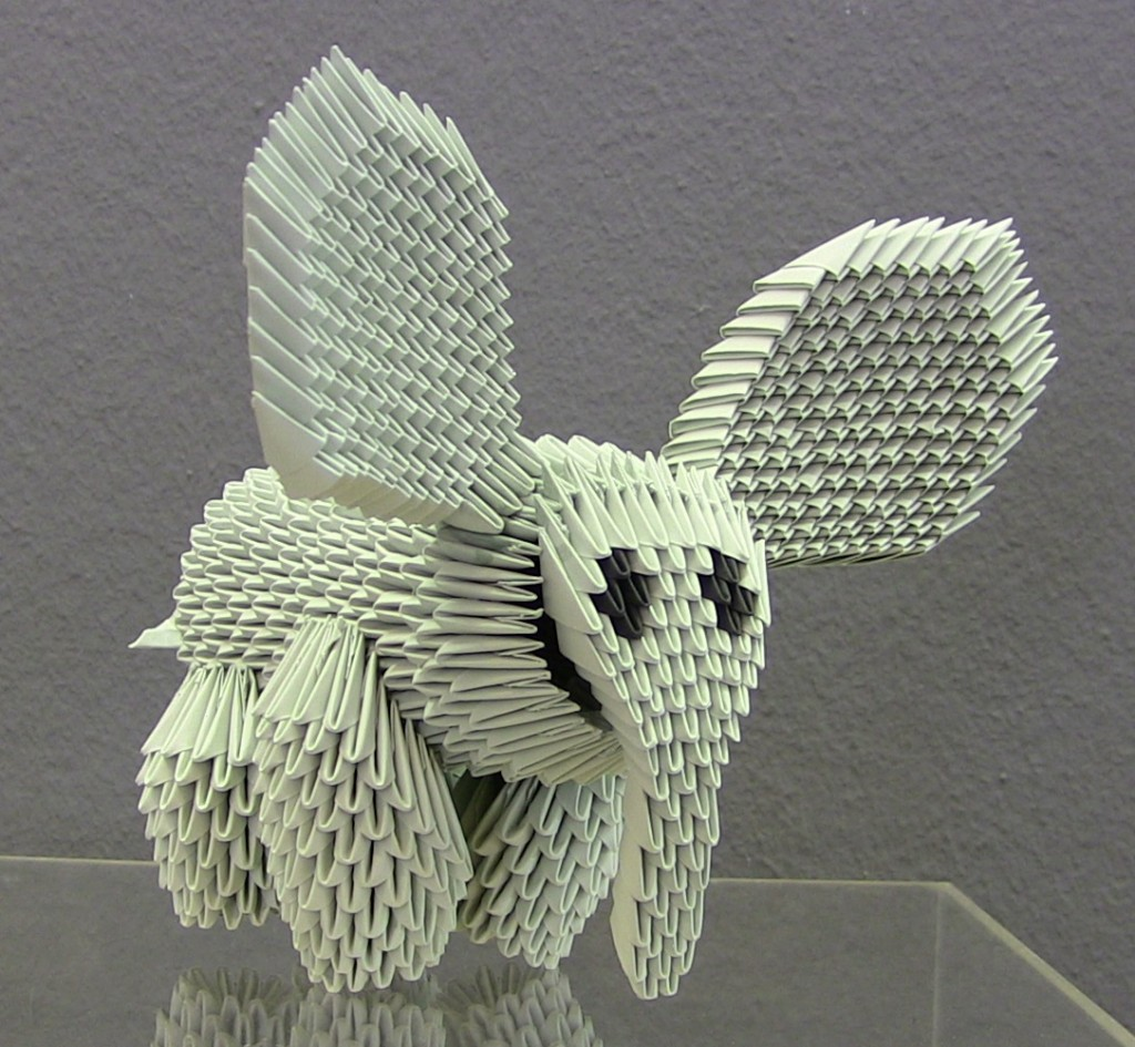 Modelo Concurso16 Dumbo